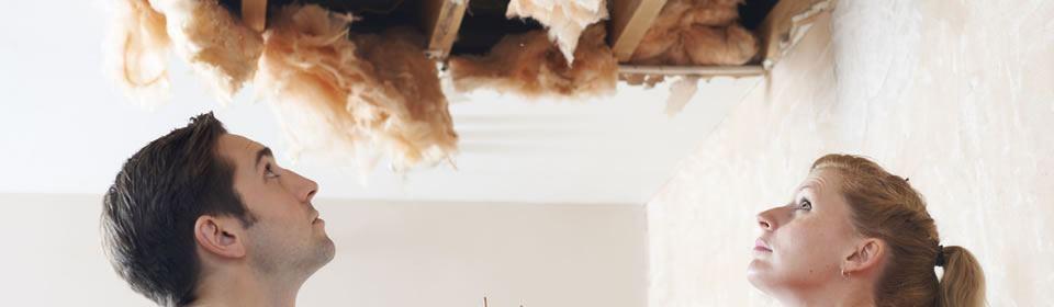 lek plafond